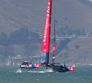 Kiwis race 8 - Copy